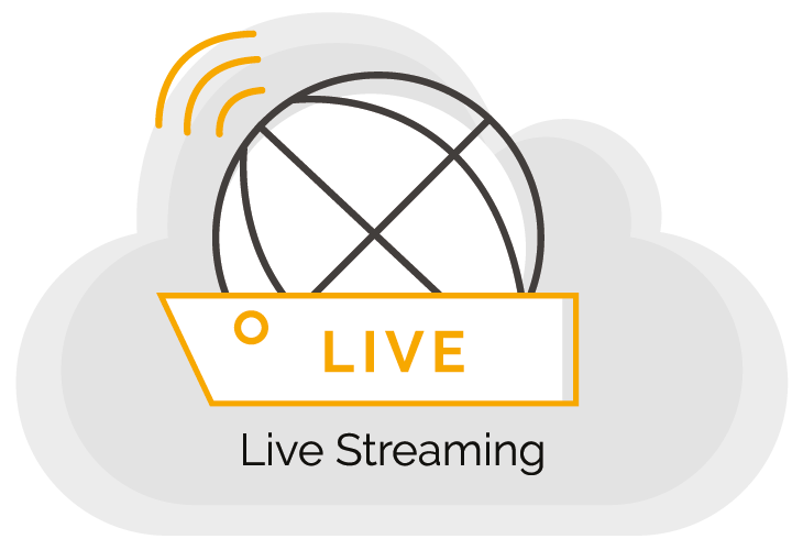 WeStream - Services - Live Streaming